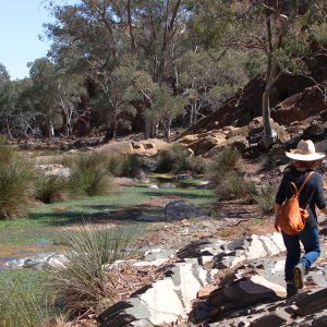 A Yoga, Creativity and Transformation Retreat in the Flinders Ranges